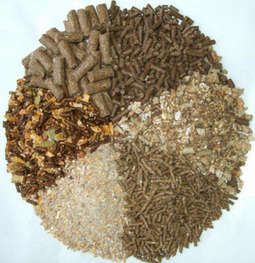 Animal Feed and Pet Foods